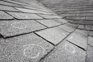 hail damaged shingles circled with chalk